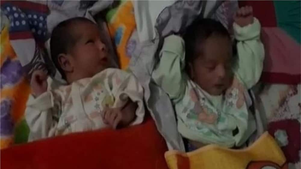 A picture of the newborn twins. Photo source: Gulf News