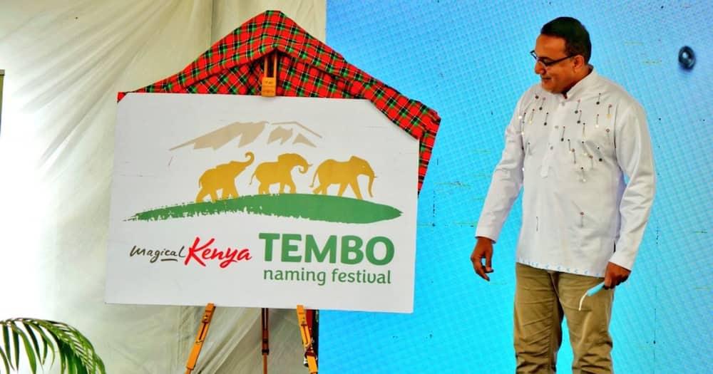 Tourists Can Now Pay KSh 500,000 to Name Elephants, Najib Balala