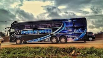 Dreamline buses online booking routes, fares, and contacts