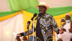 Migori: Raila Odinga's Supporters Give Him Kingly Welcome During Visit, Excitedly Shake His Hand