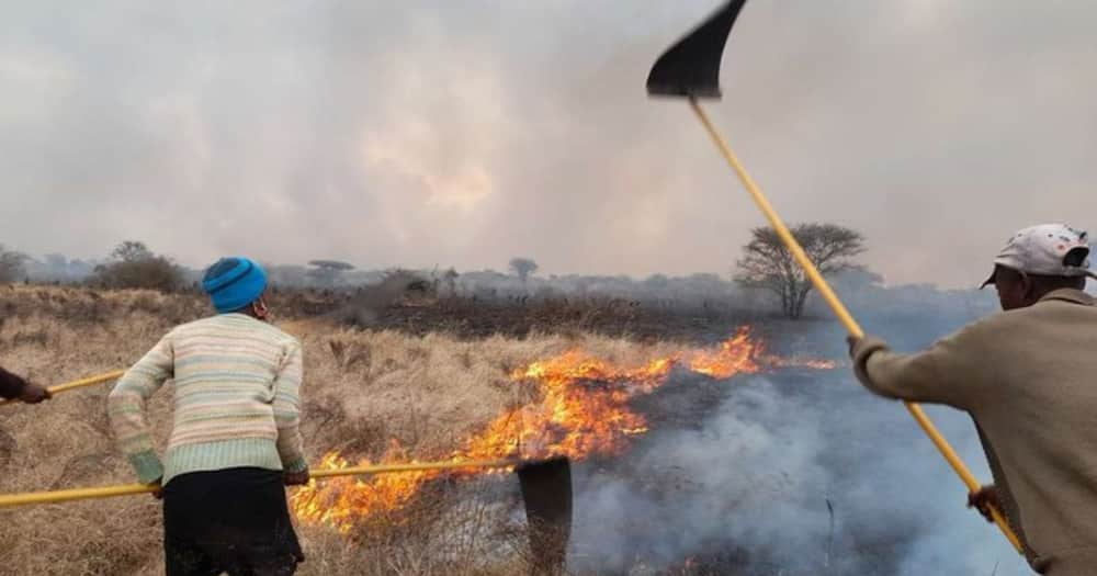 Fire breaks out at Tsavo East National Park for fourth time in 2 months