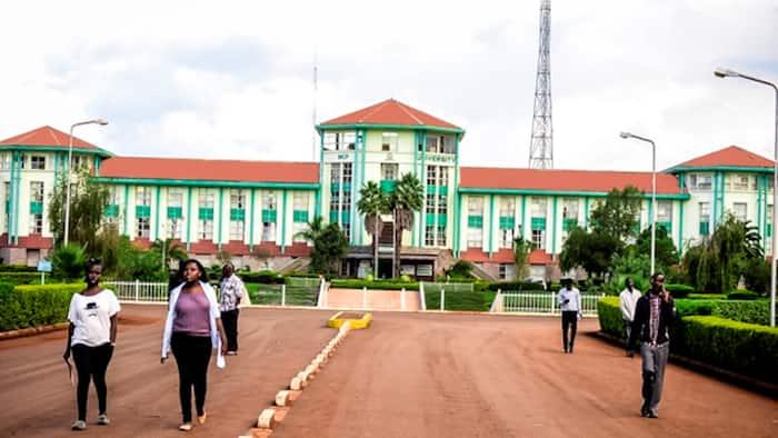 Universities List Education Degree Among Available Courses, Despite TSC Calls to Abolish It