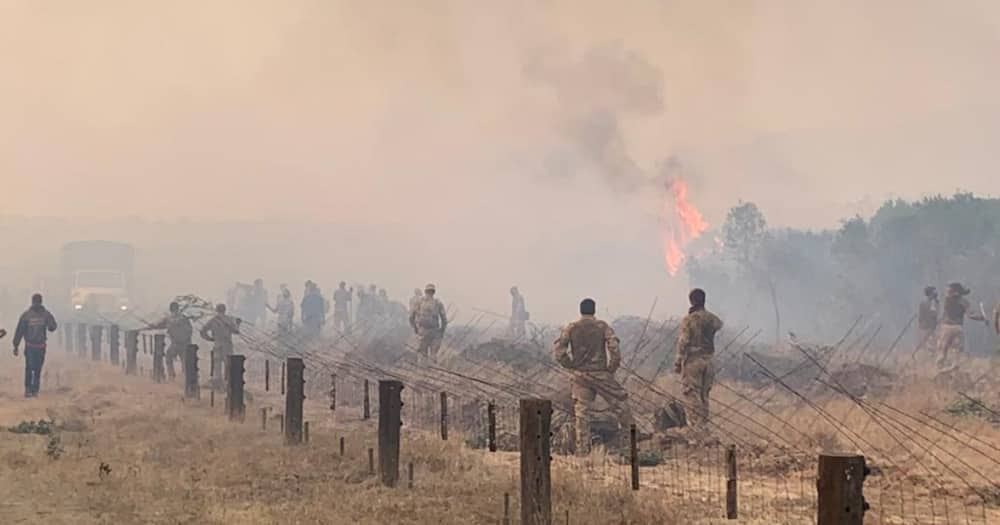 Kenyan Lobby Group Sues British Army Over Loldaiga Fire That Destroyed 12, 000 Acres of Vegetation