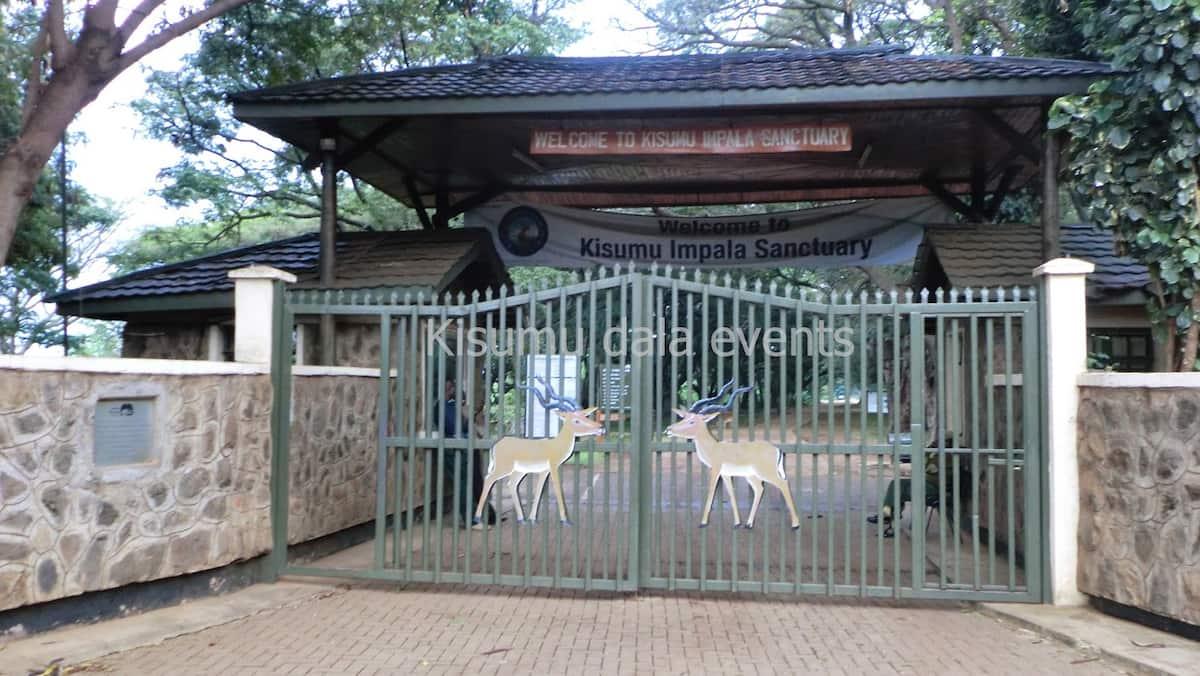 weekend getaways in kisumu romantic getaways near nairobi weekend getaway deals kenya places to visit in kenya on a budget