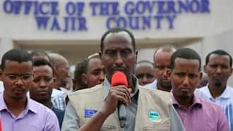 Abdi Mohamud Amepigwa Njuti: Gavana wa Wajir Afutwa Kazi na Seneti kufuatia Mapendekeo ya MCAs