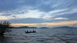 Homa Bay: Fisherman Killed by Colleague over Fishing Space