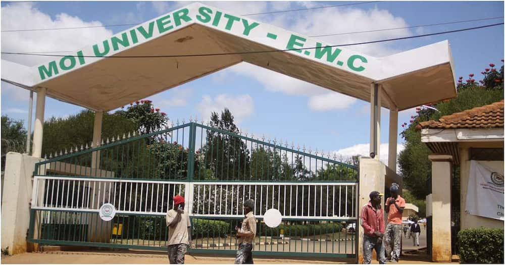 Moi University: Eldoret Police allow students to hold demonstration over HELB money delays
