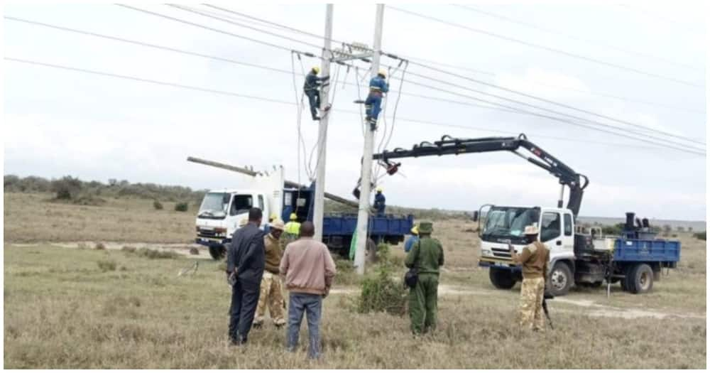 Kenya Power engineers at Soysambu Conservancy on February 21. Photo: Kenya Power