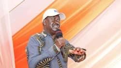 "Raila Odinga Hits Back at Western Kenya Leaders Criticising Him Over Nyanza Projects: ""Retrogressive Politics"""