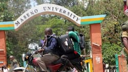 Maseno is in Kisumu, Not Vihiga, Lands Ministry Delivers Verdict on Disputed Area