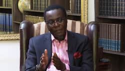 Mutahi Ngunyi Claims Military is Custodian of Kenya's Constitution, Not Judiciary