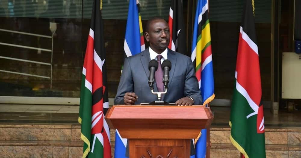 Businessman tells court his company lost KSh 180M in fake laptops tender at Ruto's office