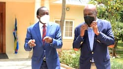 """Gideon Moi, Cyrus Jirongo Hold Talks with Kalonzo: """"We Appreciate His Service, Dedication to the Nation"""""""
