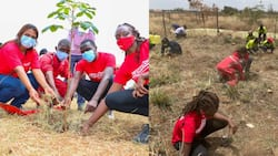 World Cleanup Day: Volunteers Clean Thika Children's Rescue Centre, Plant Trees