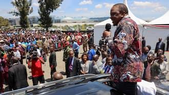 Opinion: It's Time Mt Kenya Leaders Forged a United Stand, Rally Behind Uhuru Kenyatta