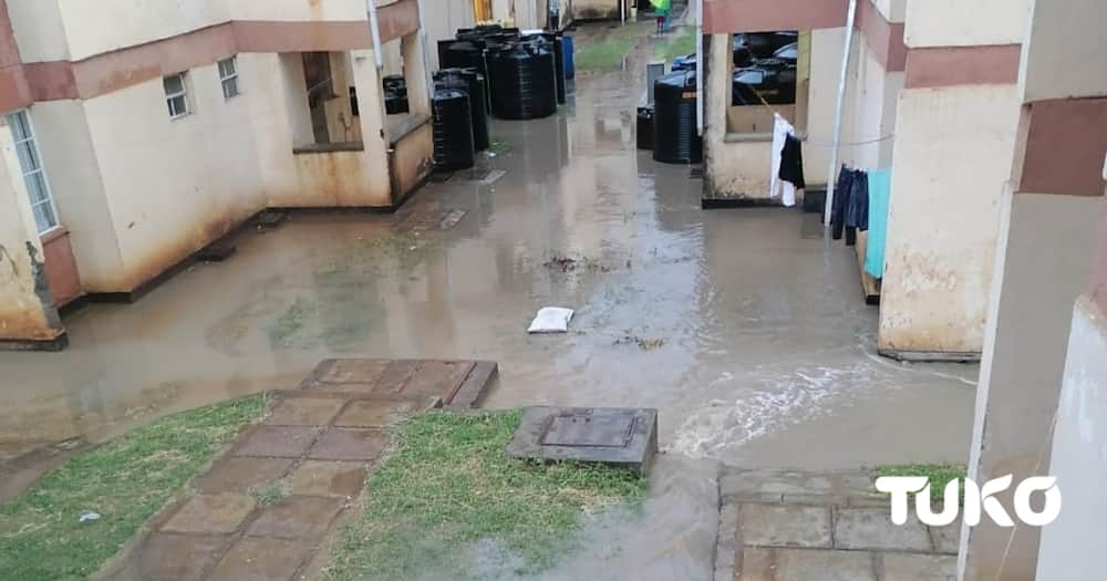 Lang'ata Police Officers Count Losses as Flood Waters from Road Construction Site Submerge Their Houses