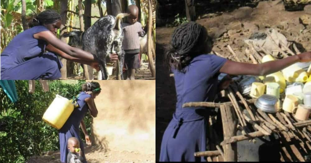 Jobless Baringo lady with First Class honour degree given job following TUKO.co.ke story