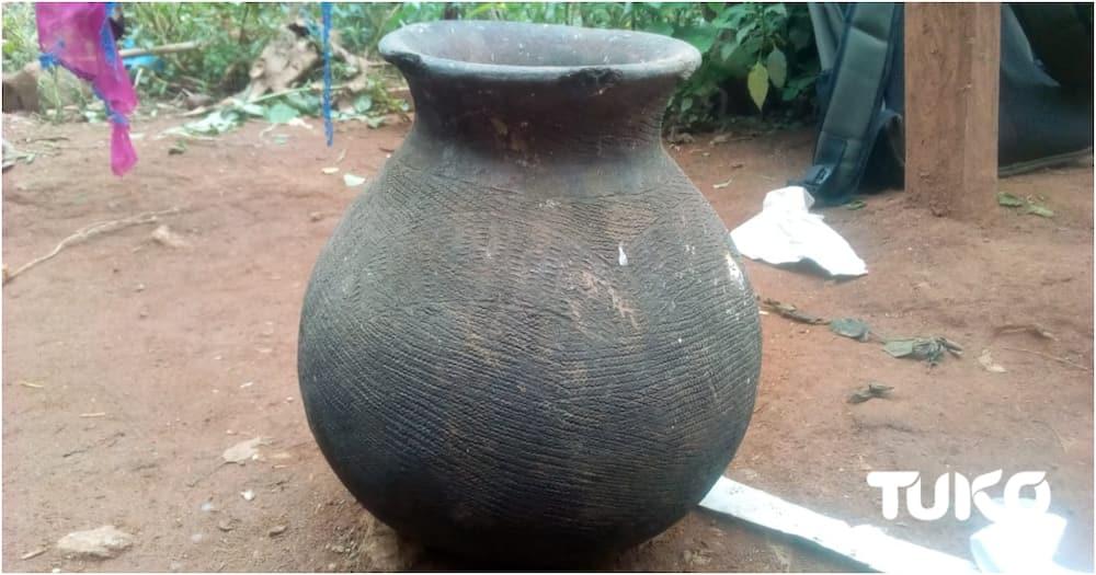 Mukereka: Magical solution Maragolis use to tenderise, spice meals