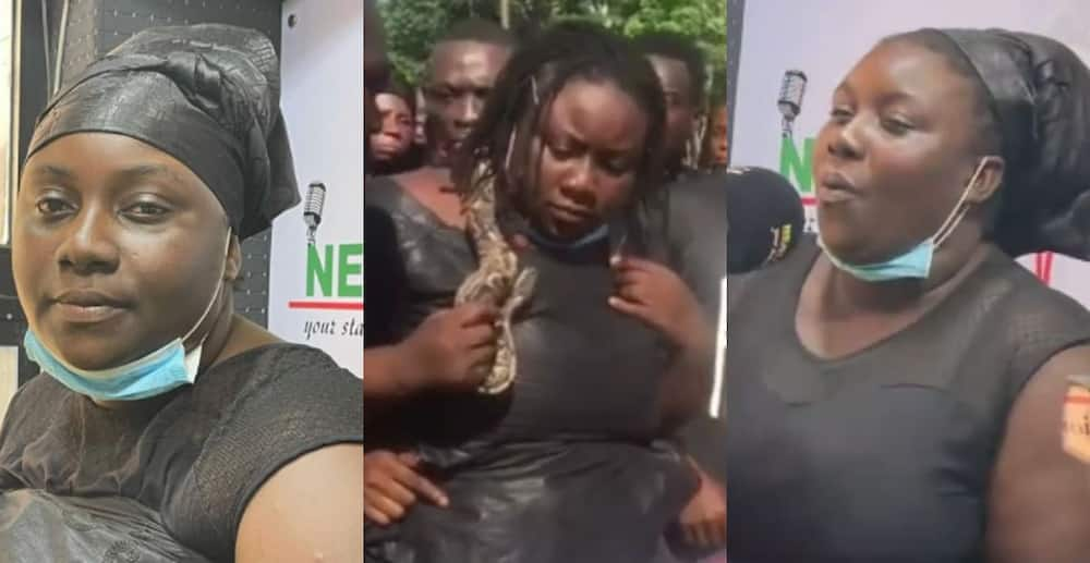 Angry woman who put live snake in late husband's casket speaks for the first time