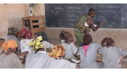 Provide security training and guns for teachers, KUPPET demands