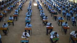 2020 KCPE: Outrage as Thousands Miss Their Secondary Schools of Choice