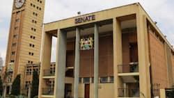 BBI Debate: Speaker Lusaka Temporarily Adjourns House to Investigate Linturi's Arrest