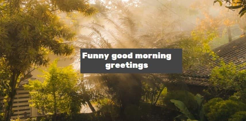Funny good morning greetings ▷ Tuko co ke