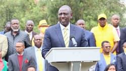 Homa Bay: Wafuasi 13 wa UDA Wakamatwa kwa Kukaidi Masharti ya COVID-19