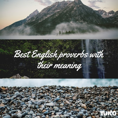 Best English proverbs with their meanings