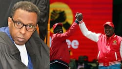 I Voted for Uhuruto 3 Times and I've Zero Regrets, Lawyer Ahmednasir