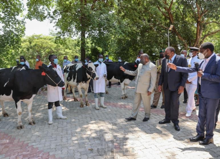 Madaraka Dei: Uhuru Amzawadi Rais wa Burundi Ng'ombe 50