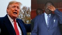 Susan Kihika, William Kabogo compare Trump to Raila after US president alleges rigging
