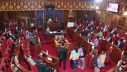 High Court Quashes Degree Requirement for Kenyans Seeking Political Seats in 2022
