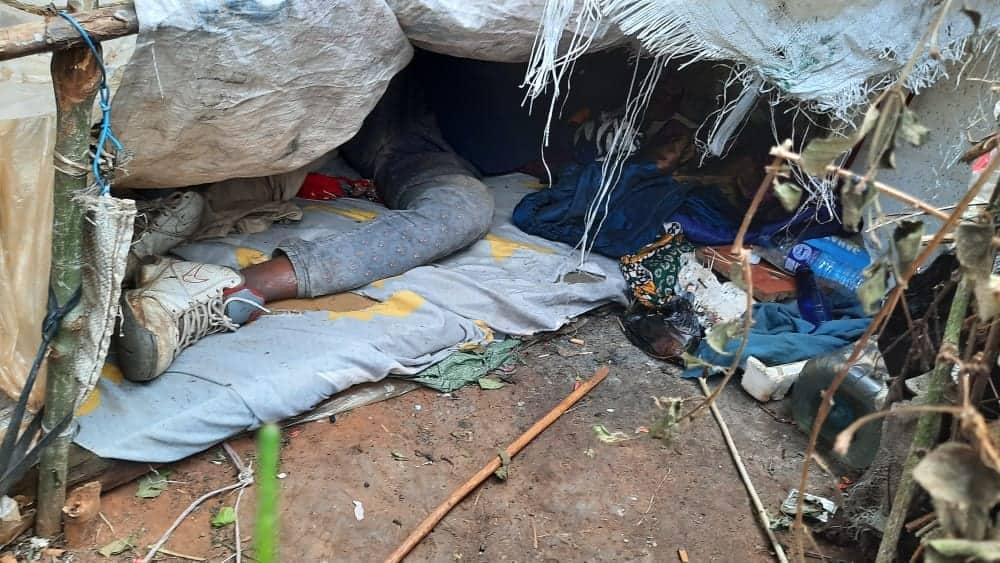 Baba na mwanawe waishi vichakani baada ya kutimuliwa na landilodi