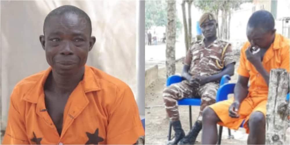 Poor watchman jailed 8 years released as Good Samaritan pays his court fine