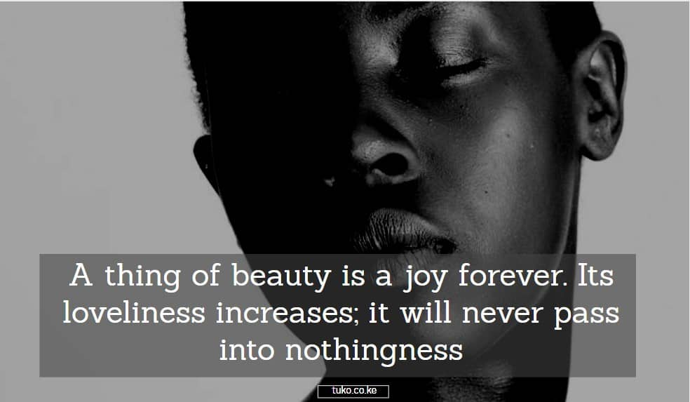beauty quotes quotes on natural beauty quotes on african beauty collateral beauty quotes