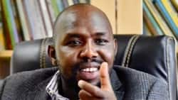 Opinion: By Eyeing Governor's Seat, Murkomen Confirms He Doubts a Ruto Win in 2022