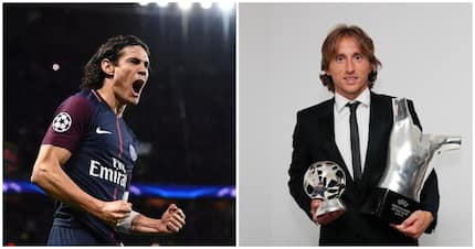 Luka Modric not worthy of Ballon d'Or - PSG star Edinson Cavani declares