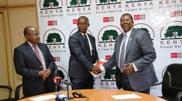 Kenya Forest Service vacancies