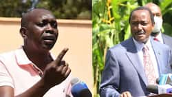 """Oscar Sudi Asks Kalonzo to Stop Complaining About Corruption: """"Learn to Hustle"""""""