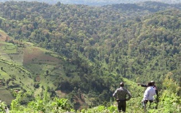 Kimwarer and Arror dam scandal
