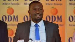 "Edwin Sifuna Clarifies Junet Was Joking in 'Raila's Gov't Will Belong to Nyanza' Remarks: ""Hamjui Jokes"""